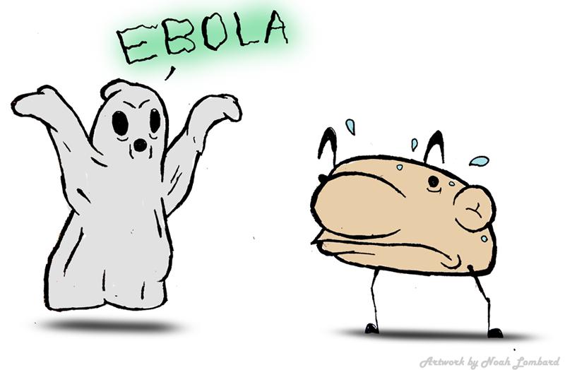 Ebola scare comes into question
