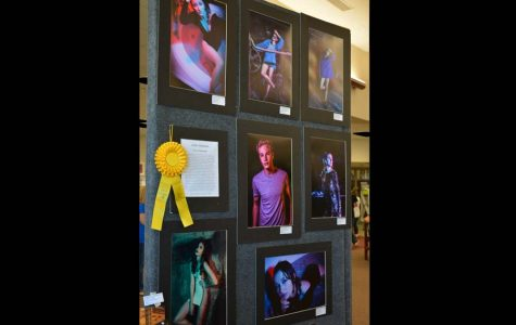 Photo show is a huge success but irritates other artists