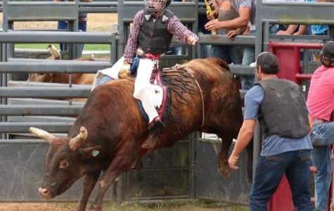 As the chute opens, senior James Pitts holds on to the bull he has drawn. Pitt competes all over the state of Alabama with the Alabama High School Rodeo Association.