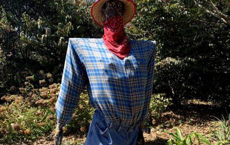 Huntsville Scarecrow Trail Leaves Student Amazed